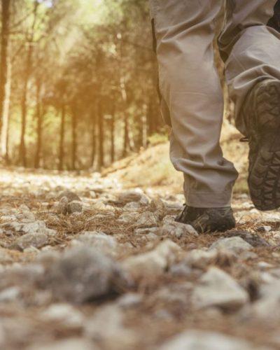 trail del cinghiale